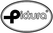 Logo Pictura